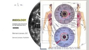 Although it become popularized in the 1980s by an American chiropractor, iridology was actually discovered in the 19th century.